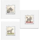 Picture of Framed Wall Art Hanging 3 Different Designs With Quality White Frame